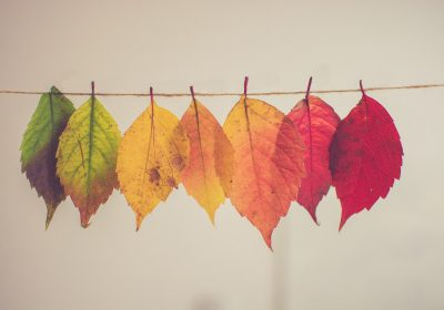 10 ideas creativas de decoración de otoño DIY